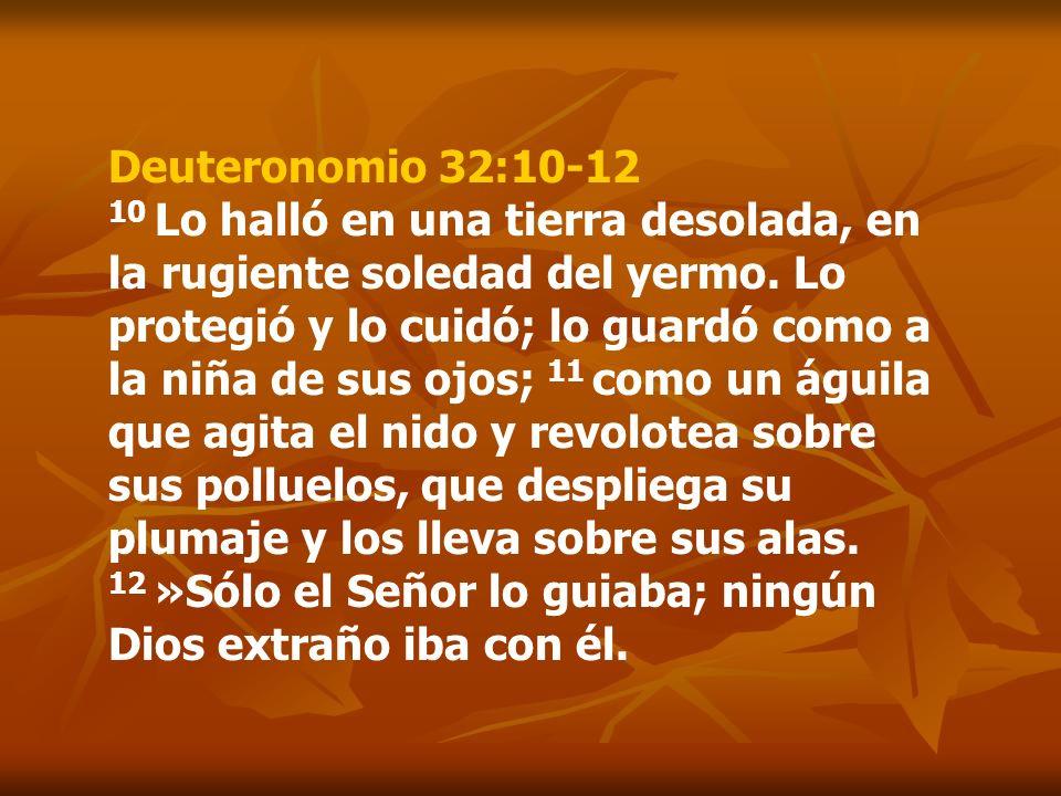 Deuteronomio 32:10-12 10 Lo halló en una tierra desolada, en la rugiente soledad del yermo.