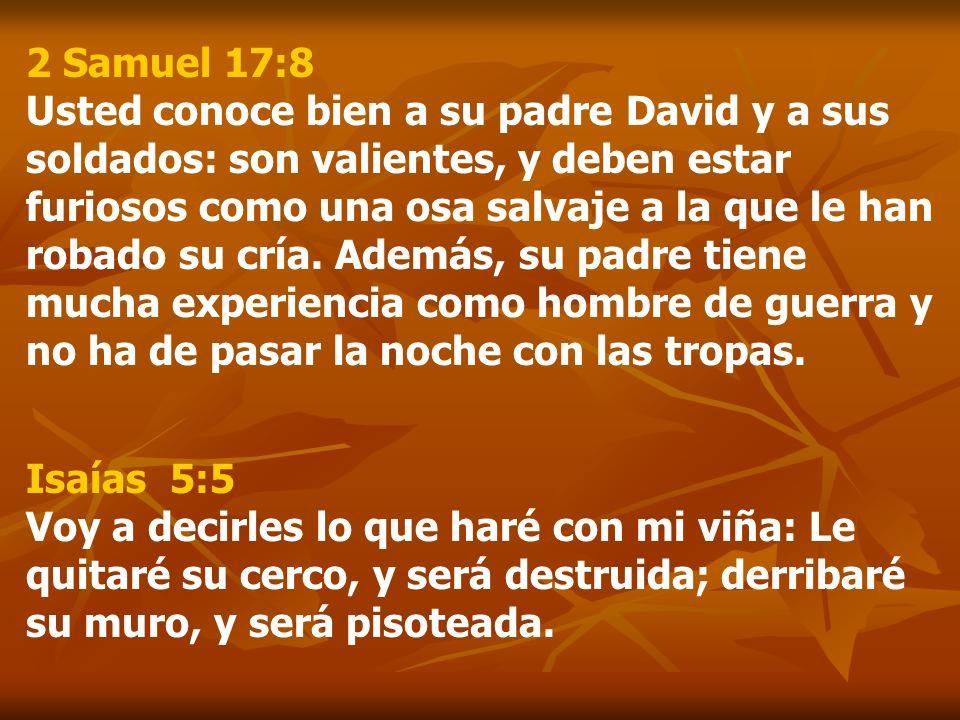 2 Samuel 17:8 Usted conoce bien a su padre David y a sus soldados: son valientes, y deben estar furiosos como una osa salvaje a la que le han robado su cría. Además, su padre tiene mucha experiencia como hombre de guerra y no ha de pasar la noche con las tropas.