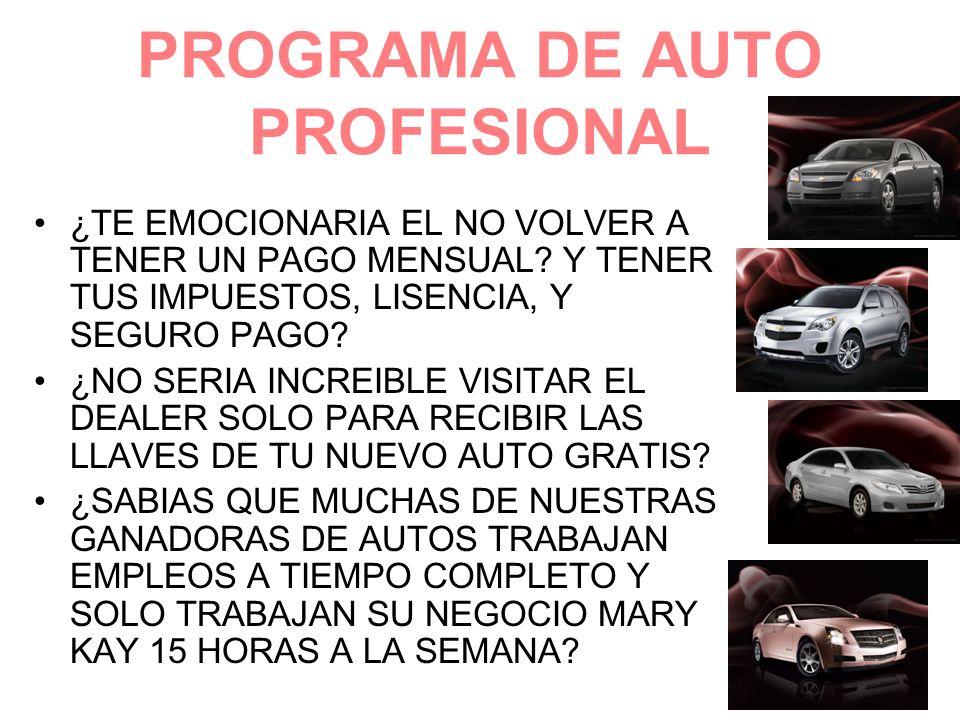 PROGRAMA DE AUTO PROFESIONAL