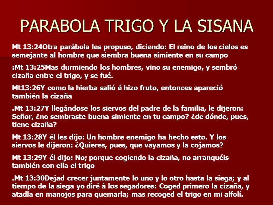 PARABOLA TRIGO Y LA SISANA