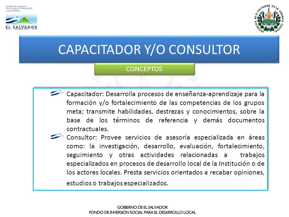 CAPACITADOR Y/O CONSULTOR