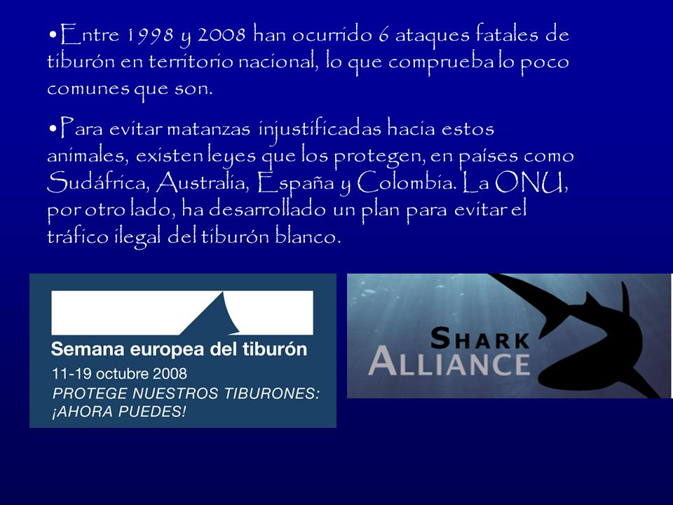 Entre 1998 y 2008 han ocurrido 6 ataques fatales de tiburón en territorio nacional, lo que comprueba lo poco comunes que son.