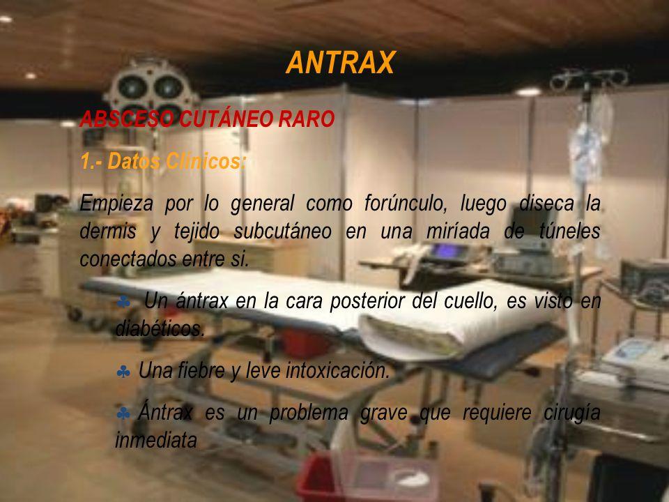 ANTRAX ABSCESO CUTÁNEO RARO 1.- Datos Clínicos: