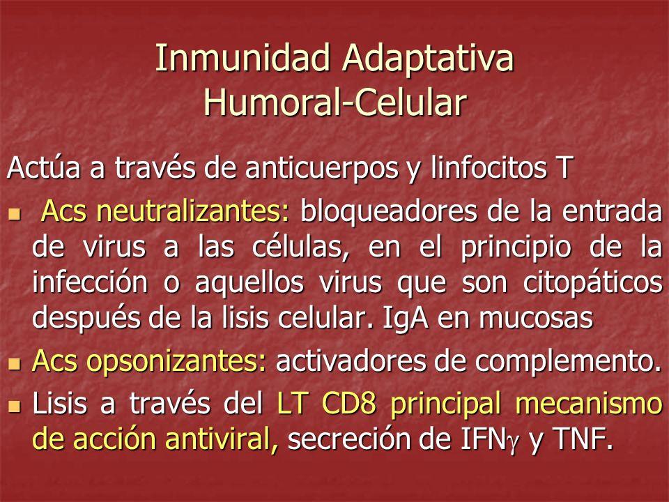 Inmunidad Adaptativa Humoral-Celular