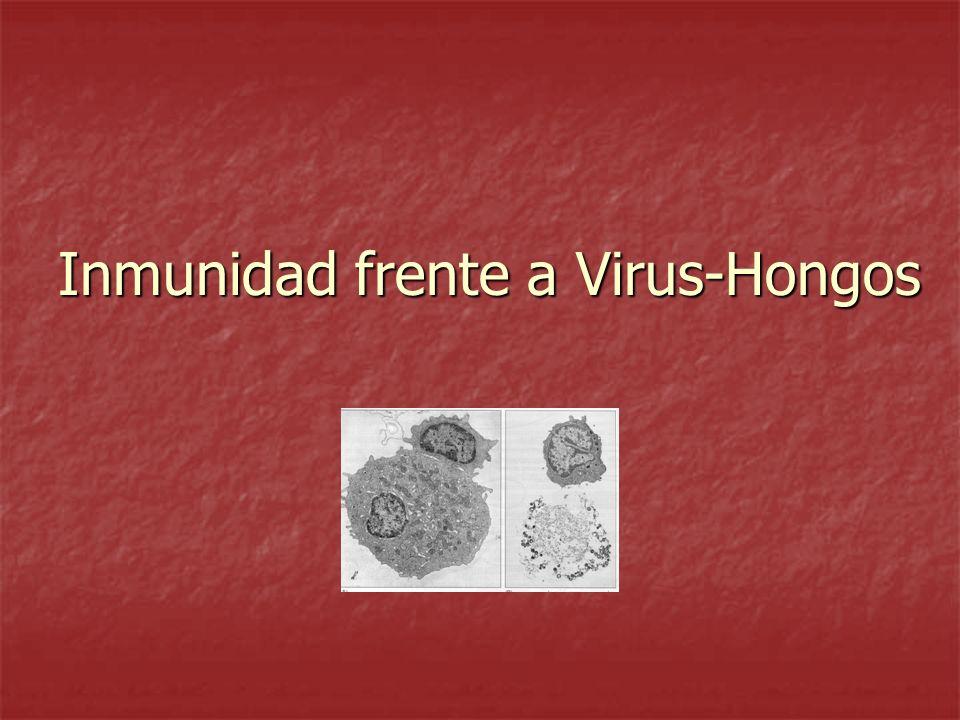 Inmunidad frente a Virus-Hongos