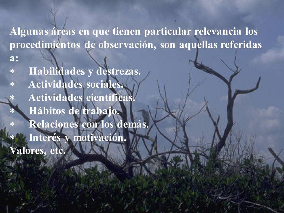 Algunas áreas en que tienen particular relevancia los procedimientos de observación, son aquellas referidas a:
