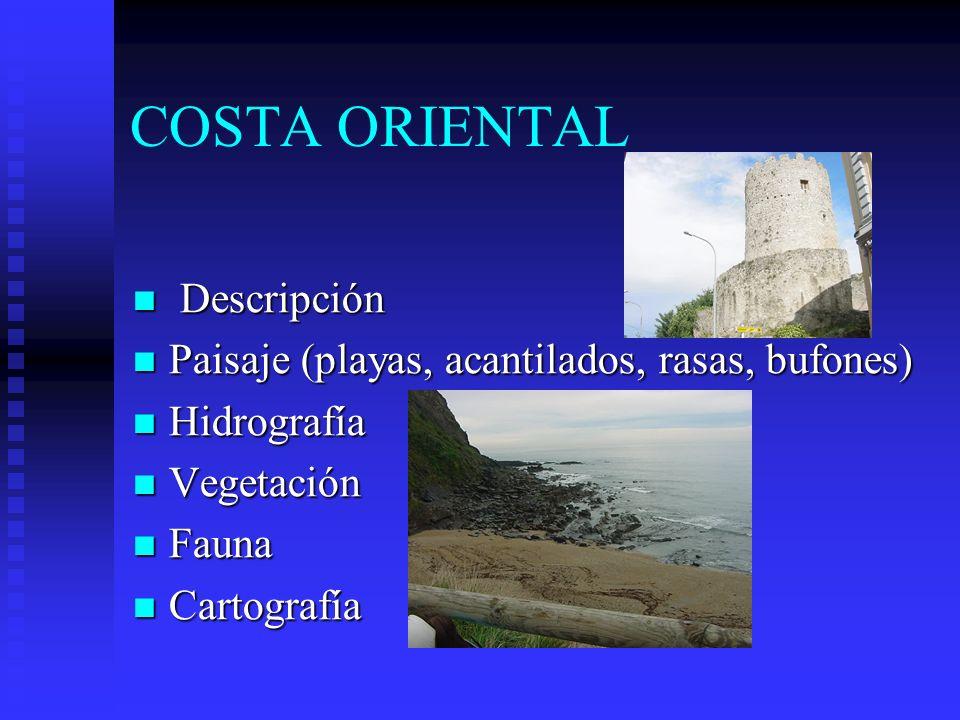 COSTA ORIENTAL Descripción