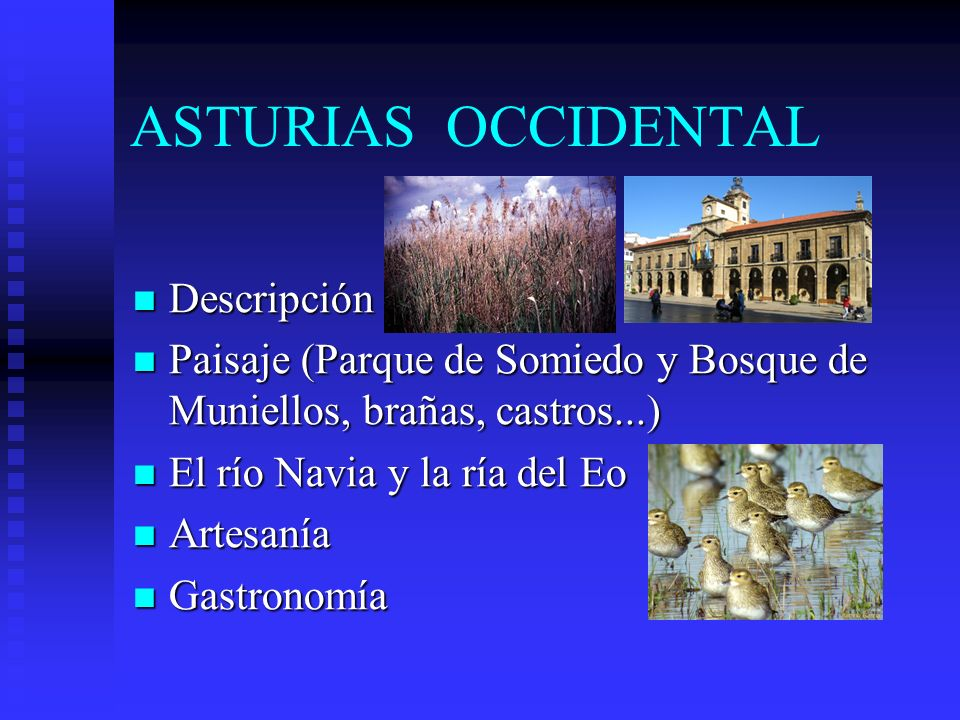 ASTURIAS OCCIDENTAL Descripción