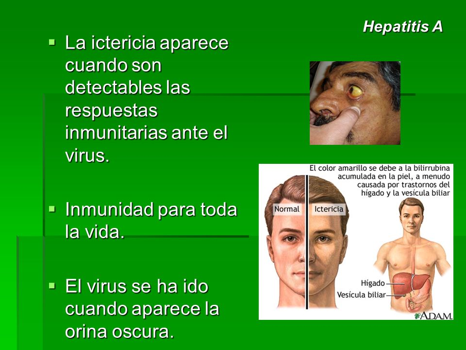 Inmunidad para toda la vida.