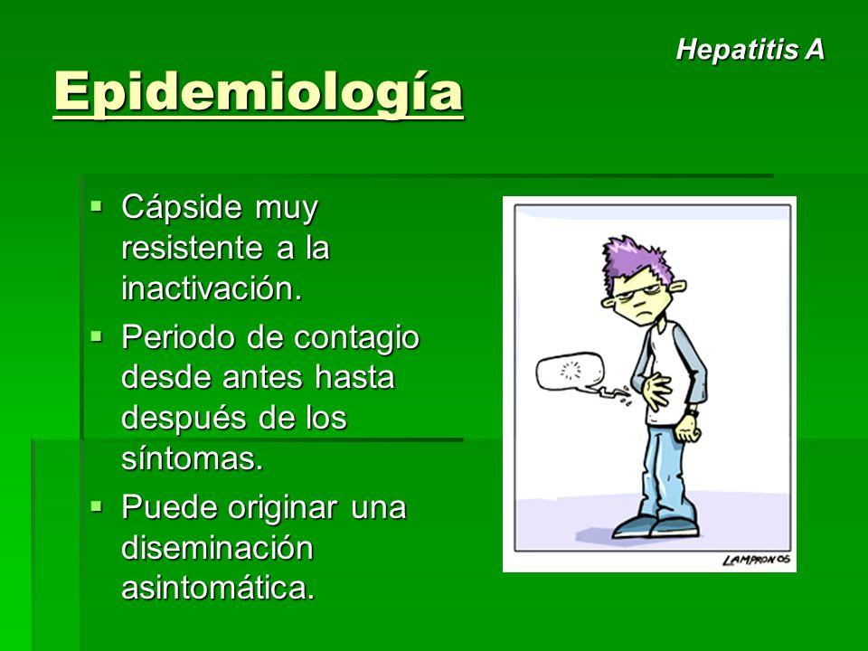 Epidemiología Cápside muy resistente a la inactivación.