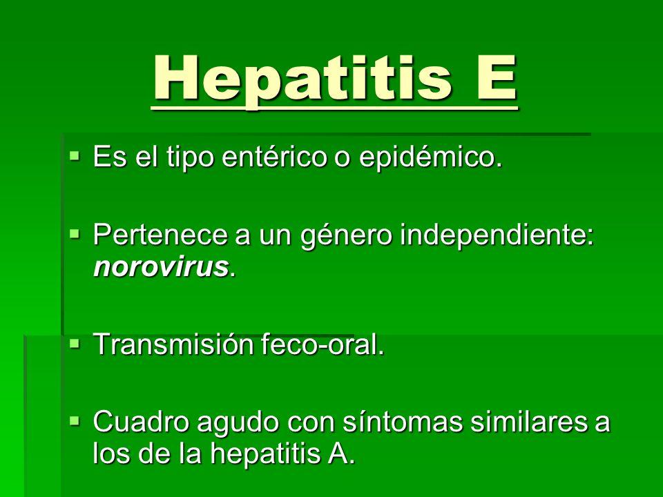 Hepatitis E Es el tipo entérico o epidémico.