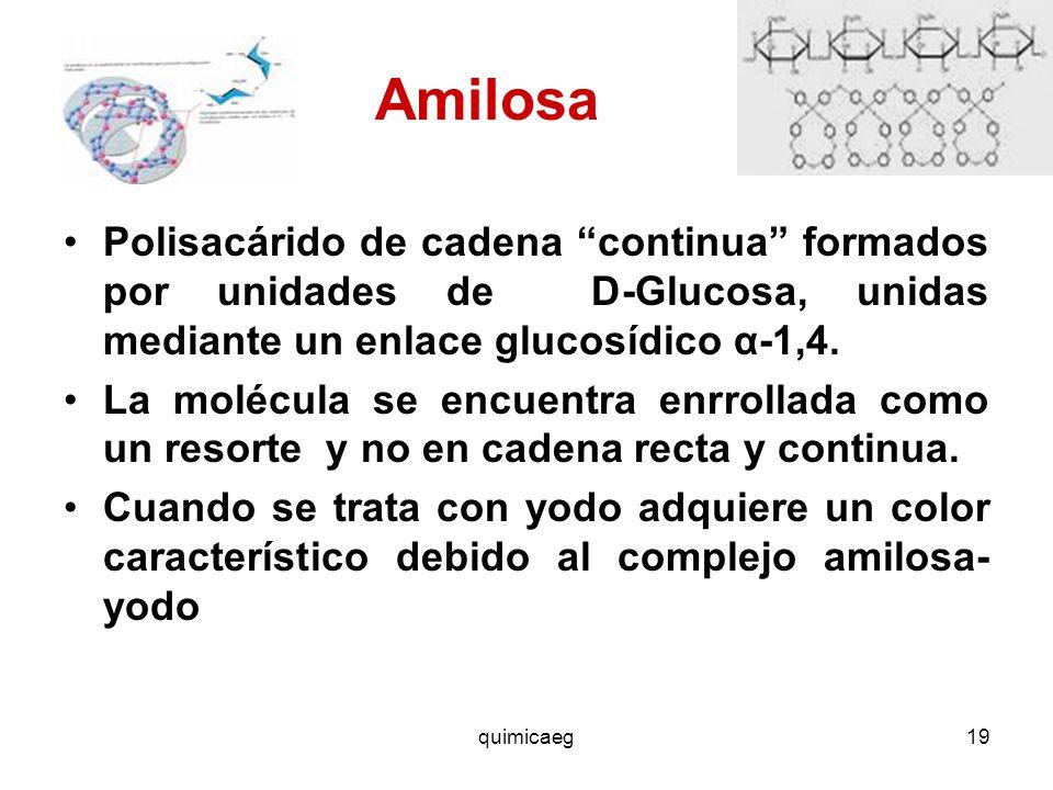 DI Y POLISACÁRIDOS quimicaeg. - ppt video online descargar