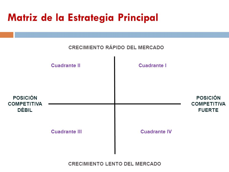 Matriz de la Estrategia Principal