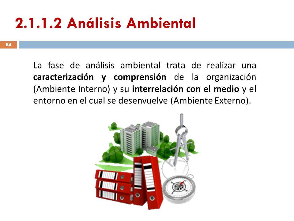2.1.1.2 Análisis Ambiental