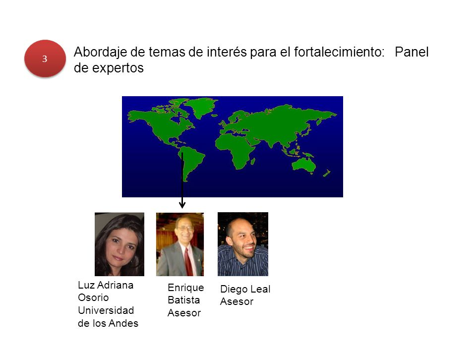 3 Abordaje de temas de interés para el fortalecimiento: Panel de expertos. Luz Adriana Osorio. Universidad de los Andes.