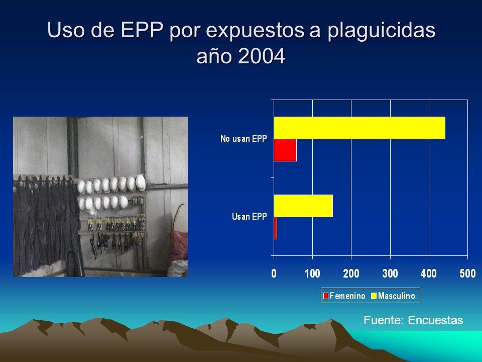 Uso de EPP por expuestos a plaguicidas año 2004