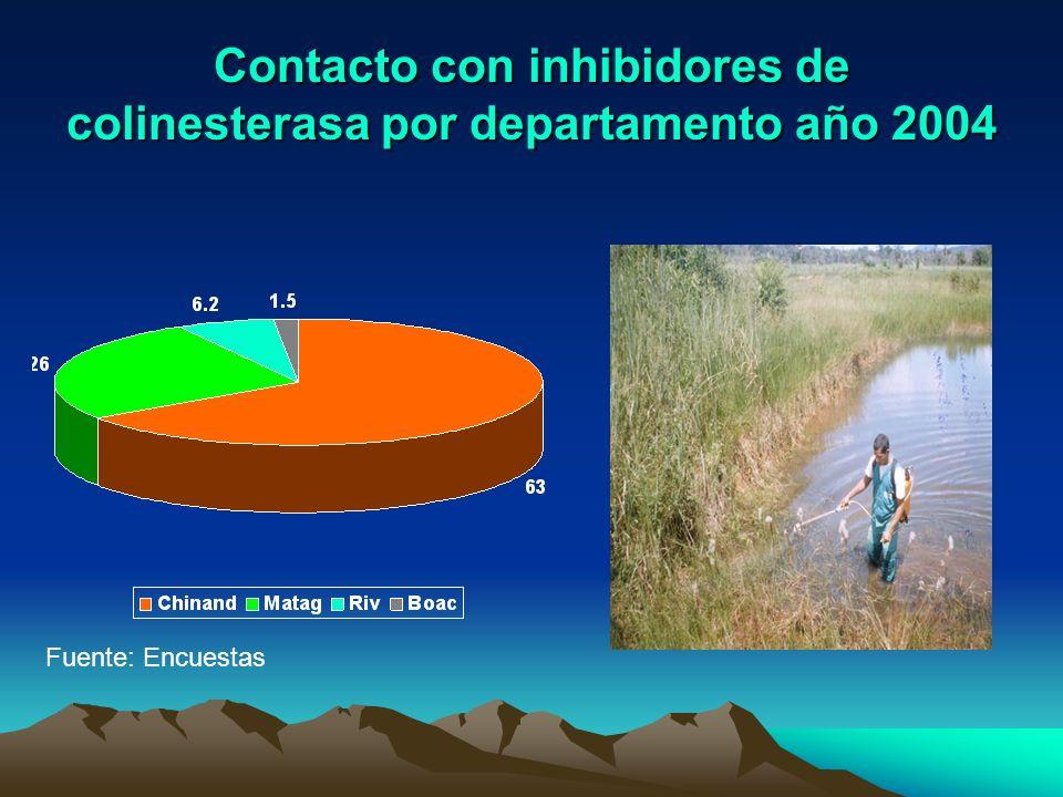 Contacto con inhibidores de colinesterasa por departamento año 2004