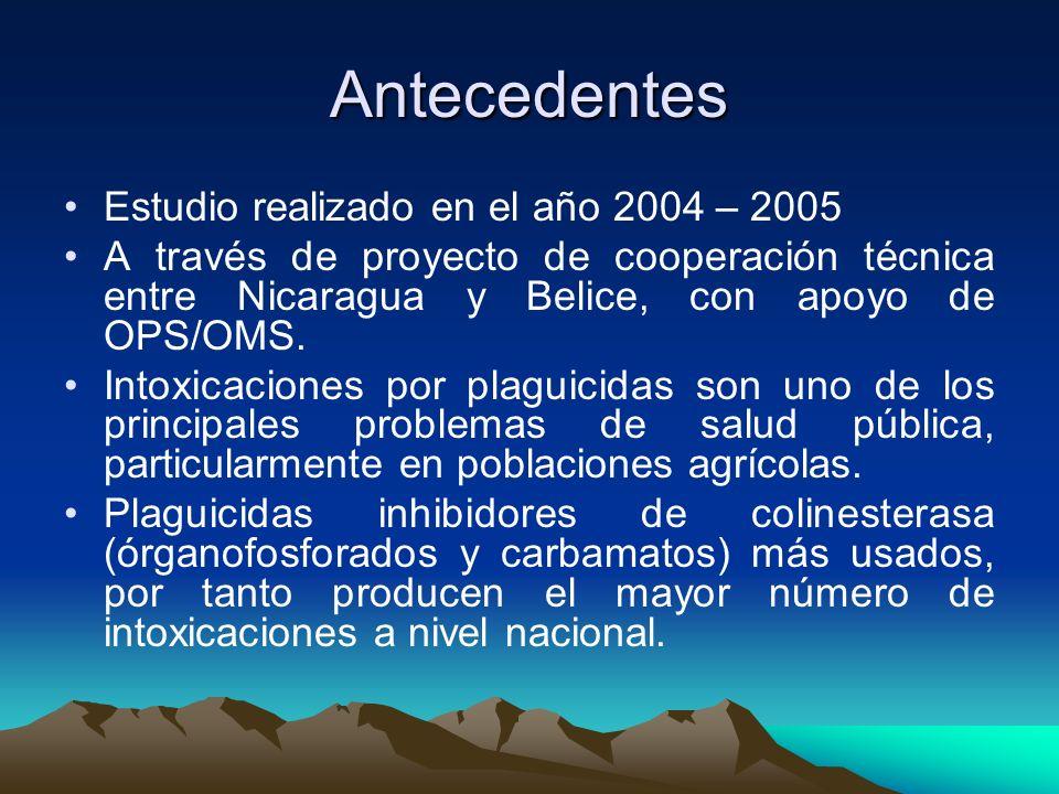 Antecedentes Estudio realizado en el año 2004 – 2005