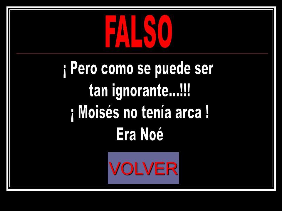 VOLVER FALSO ¡ Pero como se puede ser tan ignorante...!!!