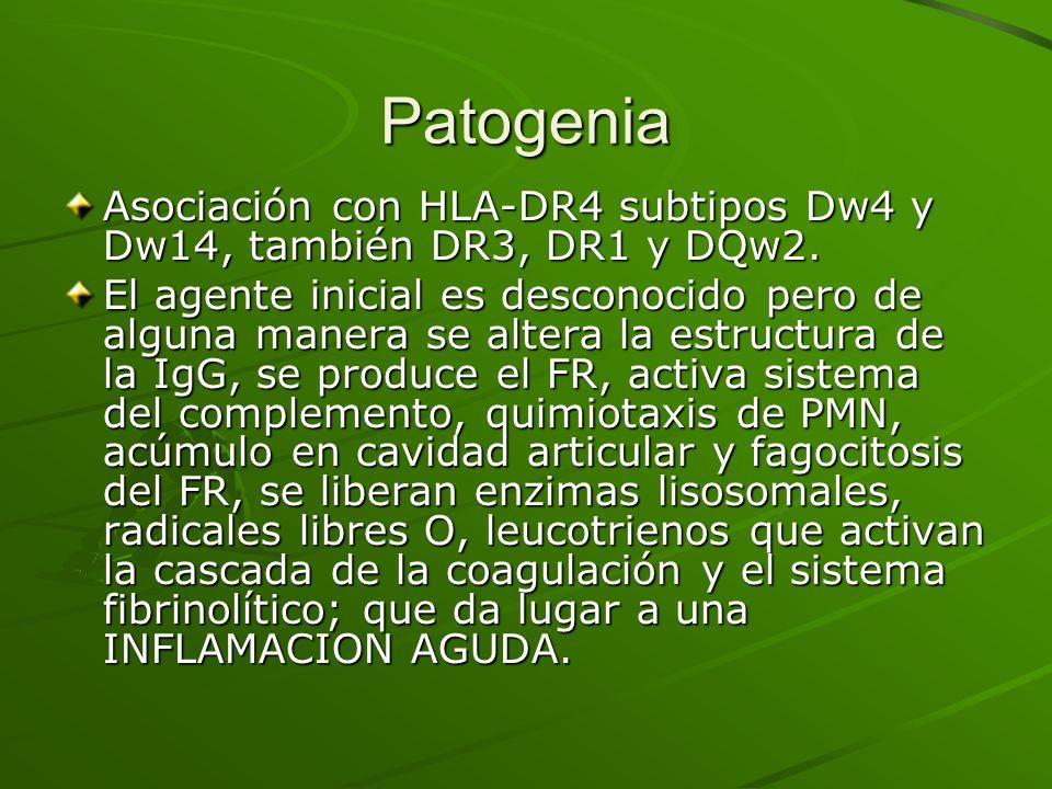 Patogenia Asociación con HLA-DR4 subtipos Dw4 y Dw14, también DR3, DR1 y DQw2.