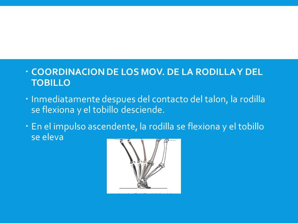 COORDINACION DE LOS MOV. DE LA RODILLA Y DEL TOBILLO