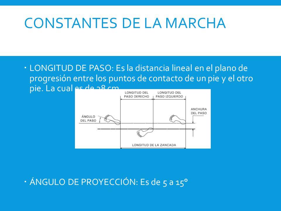 CONSTANTES DE LA MARCHA