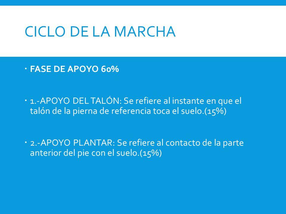 CICLO DE LA MARCHA FASE DE APOYO 60%