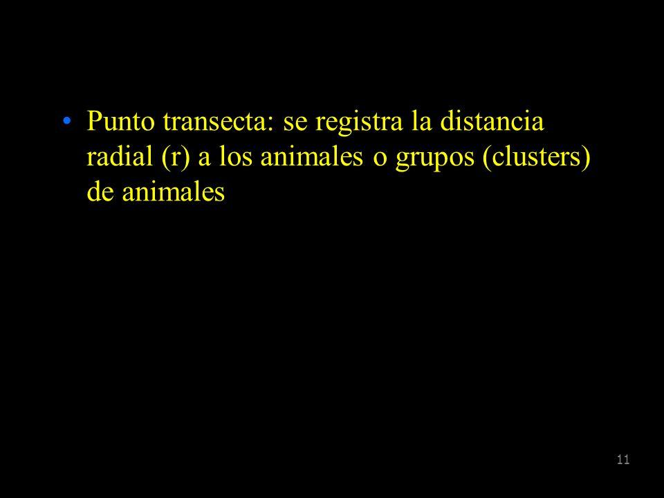 Punto transecta: se registra la distancia radial (r) a los animales o grupos (clusters) de animales