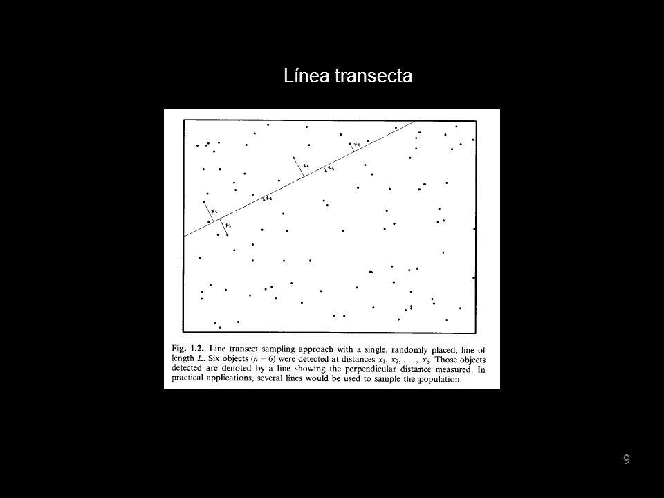 Línea transecta