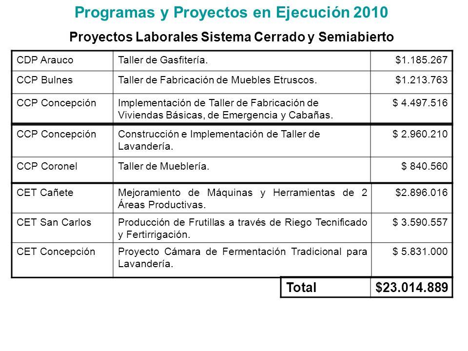 Programas y Proyectos en Ejecución 2010