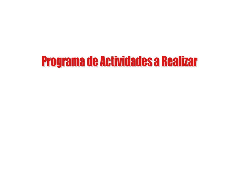 Programa de Actividades a Realizar