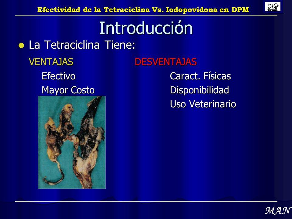 Introducción La Tetraciclina Tiene: VENTAJAS DESVENTAJAS MAN