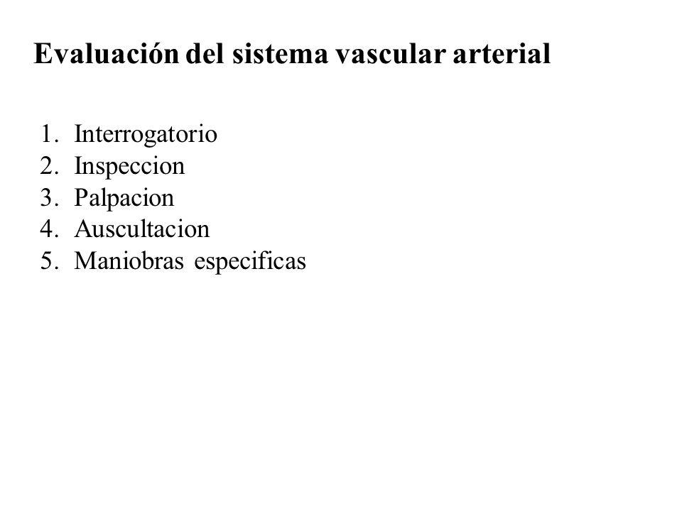 Evaluación del sistema vascular arterial