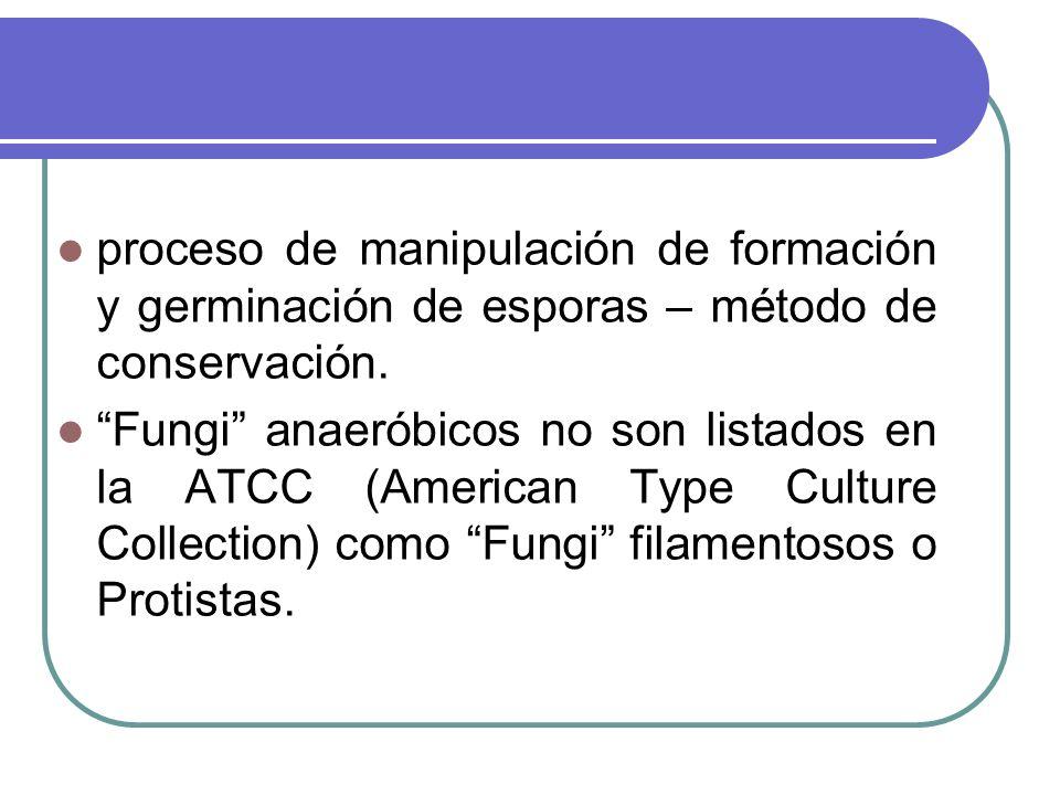 proceso de manipulación de formación y germinación de esporas – método de conservación.