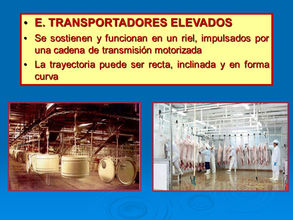 E. TRANSPORTADORES ELEVADOS