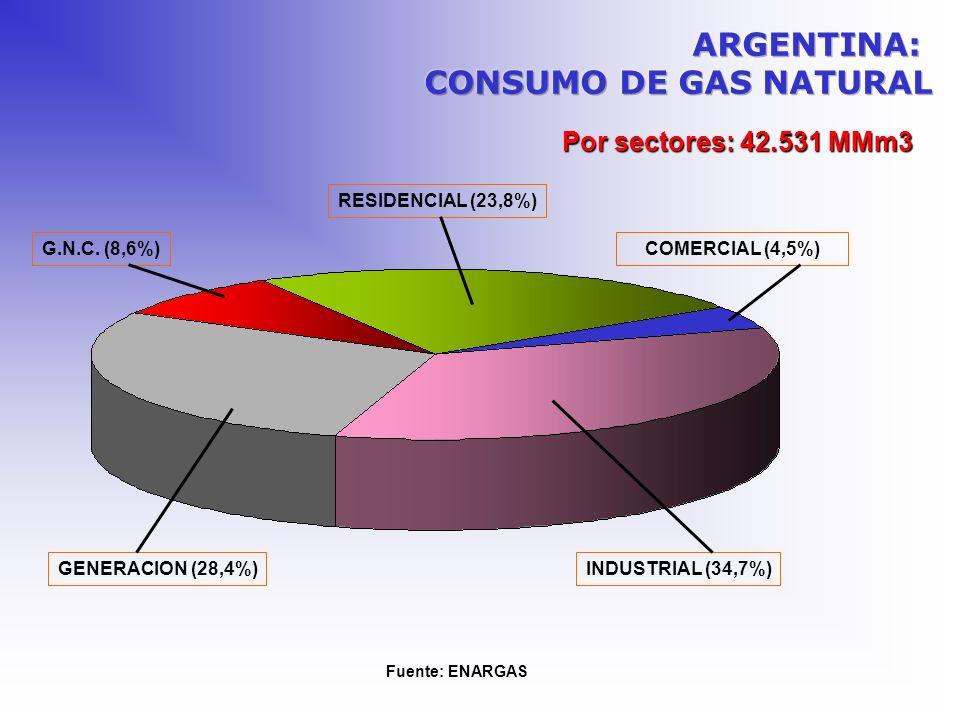 ARGENTINA: CONSUMO DE GAS NATURAL Por sectores: 42.531 MMm3