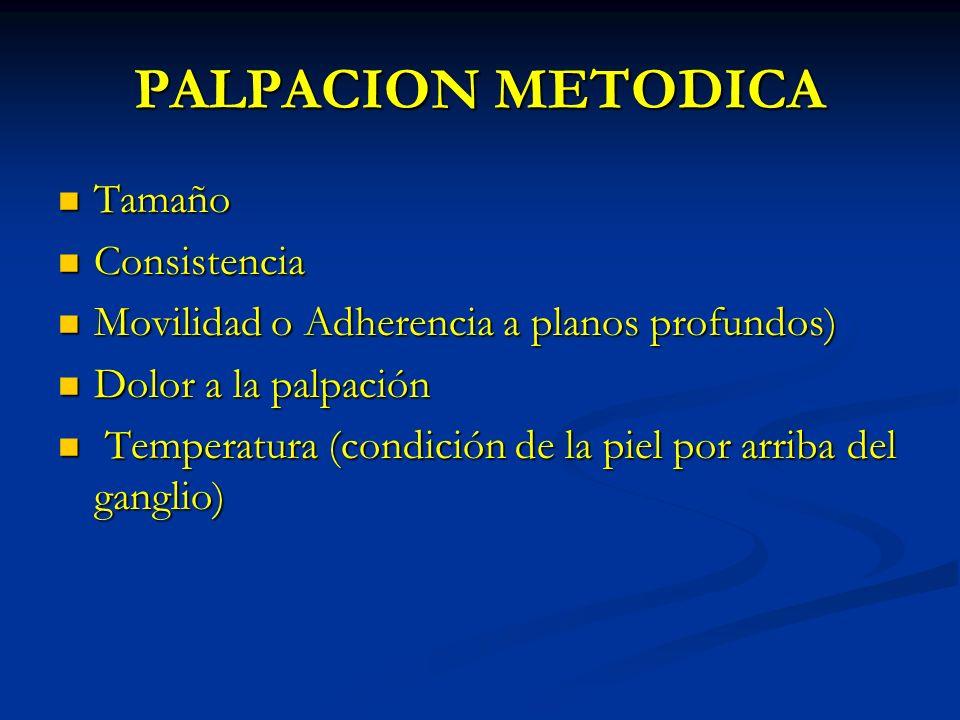 PALPACION METODICA Tamaño Consistencia