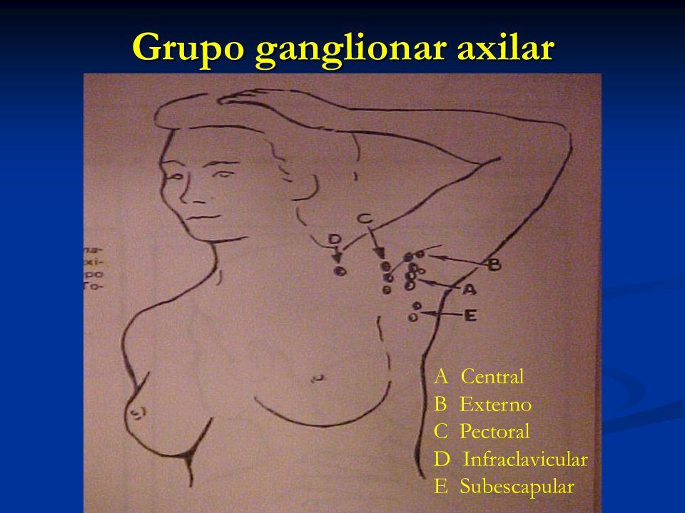 Grupo ganglionar axilar