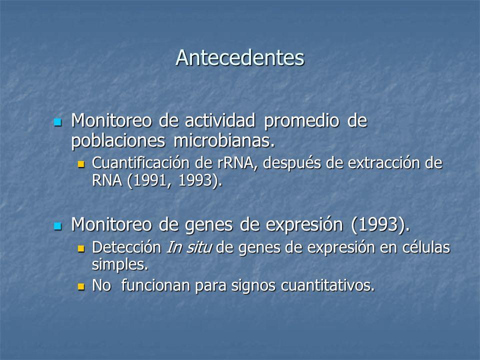 Antecedentes Monitoreo de actividad promedio de poblaciones microbianas. Cuantificación de rRNA, después de extracción de RNA (1991, 1993).