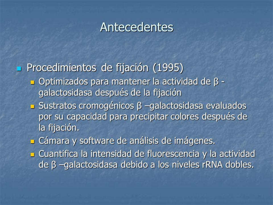 Antecedentes Procedimientos de fijación (1995)