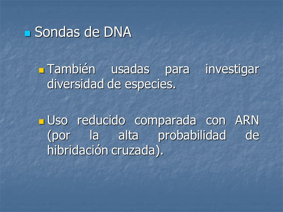 Sondas de DNA También usadas para investigar diversidad de especies.