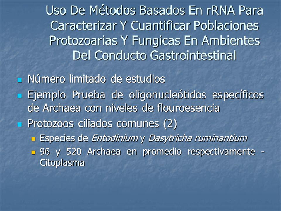 Uso De Métodos Basados En rRNA Para Caracterizar Y Cuantificar Poblaciones Protozoarias Y Fungicas En Ambientes Del Conducto Gastrointestinal