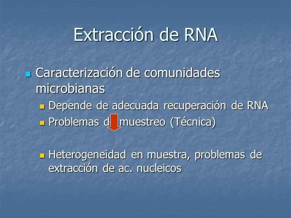 Extracción de RNA Caracterización de comunidades microbianas
