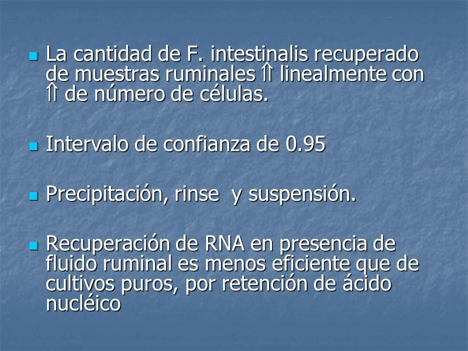 La cantidad de F. intestinalis recuperado de muestras ruminales  linealmente con  de número de células.