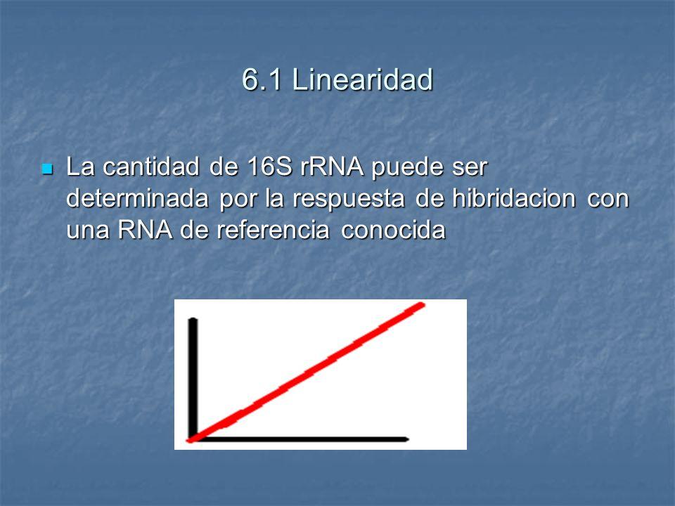 6.1 Linearidad La cantidad de 16S rRNA puede ser determinada por la respuesta de hibridacion con una RNA de referencia conocida.