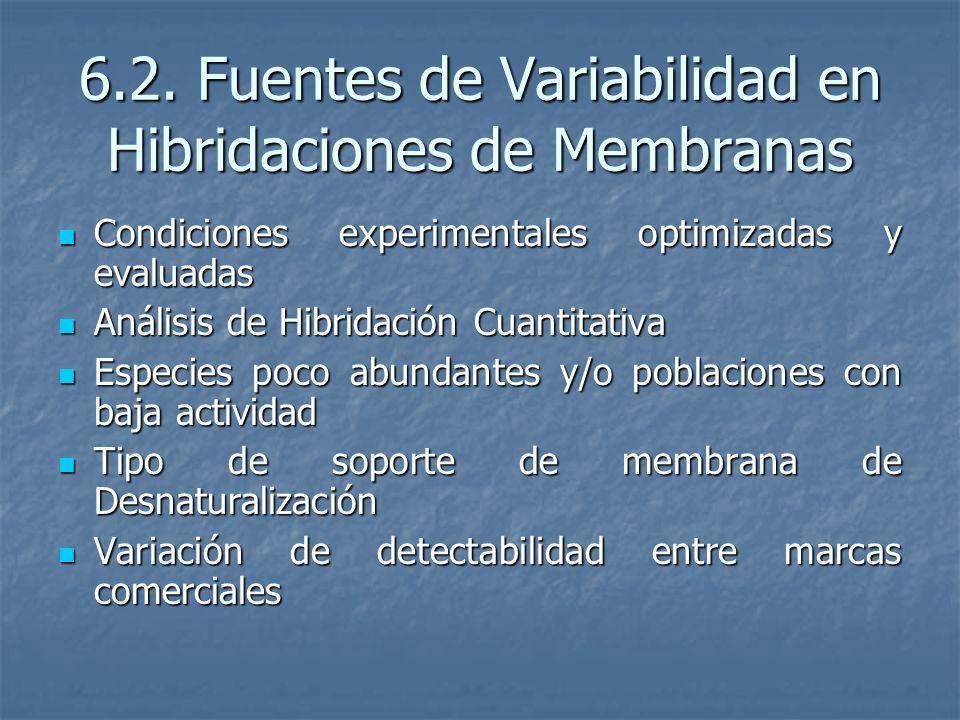 6.2. Fuentes de Variabilidad en Hibridaciones de Membranas