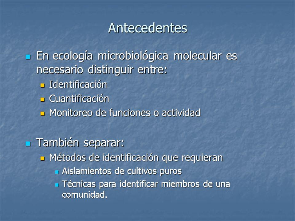 Antecedentes En ecología microbiológica molecular es necesario distinguir entre: Identificación. Cuantificación.