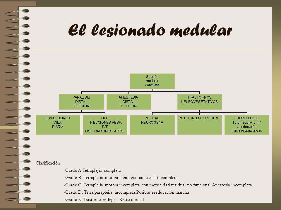 El lesionado medular Clasificación -Grado A:Tetraplejía completa