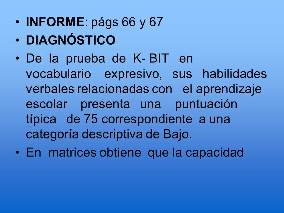 INFORME: págs 66 y 67 DIAGNÓSTICO.