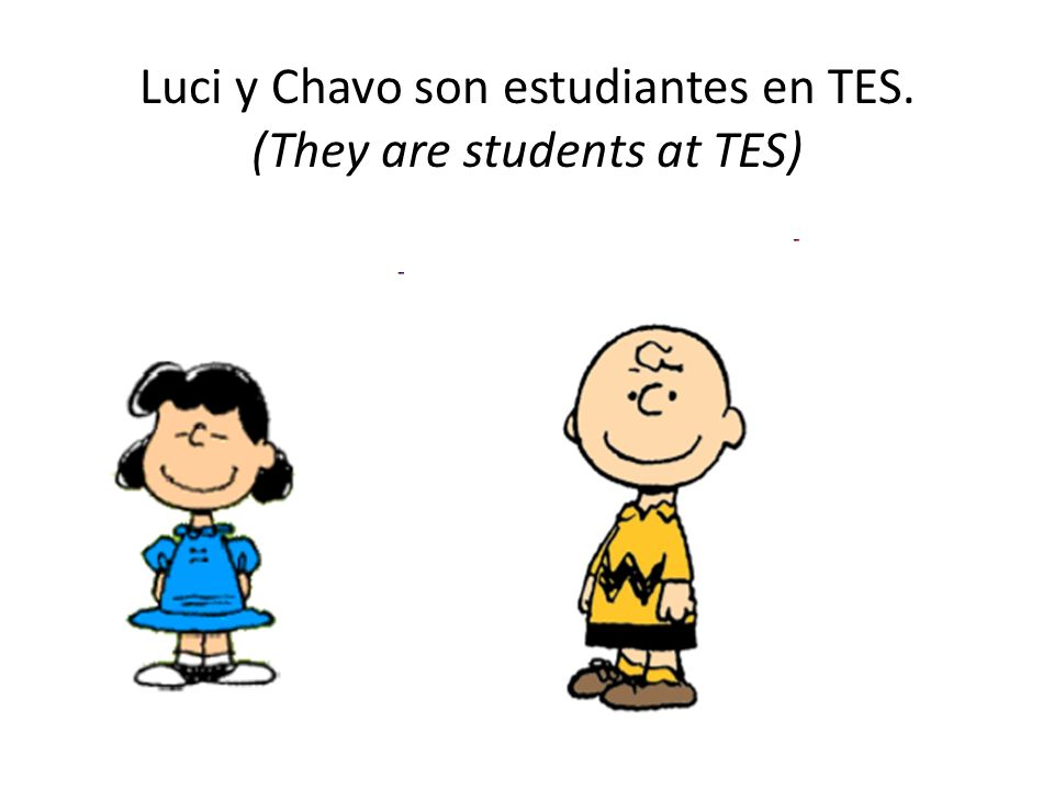 Luci y Chavo son estudiantes en TES. (They are students at TES)